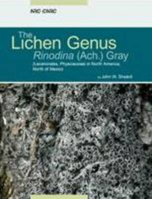 The Lichen Genus Rinodina (lecanoromycetidae, Physciaceae) in North America, North of Mexico (Paperback)