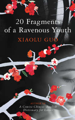 20 Fragments of a Ravenous Youth (Hardback)