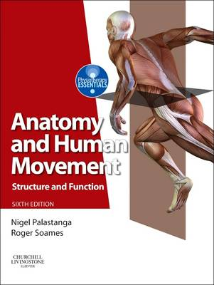 Anatomy and Human Movement: Structure and Function - Physiotherapy Essentials (Paperback)