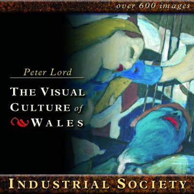 Industrial Society - Visual Culture of Wales S. (CD-ROM)