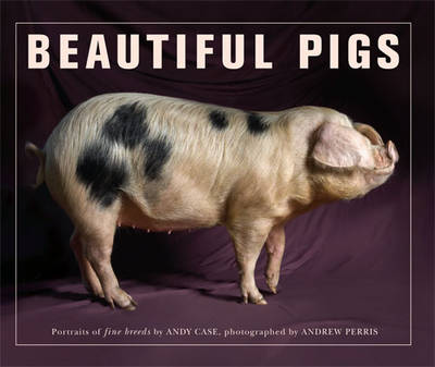 Beautiful Pigs (Paperback)