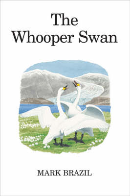 The Whooper Swan - Poyser Monographs (Hardback)