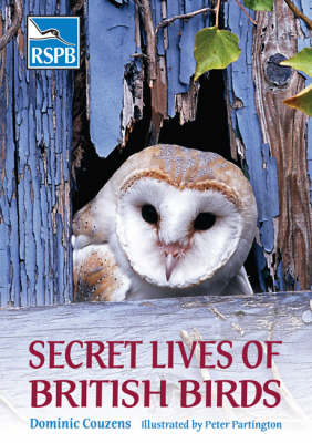 Secret Lives of British Birds - RSPB (Paperback)