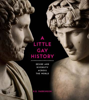 A Little Gay History: Desire and Diversity Across the World (Paperback)