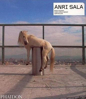 Anri Sala - Contemporary Artists Series (Paperback)