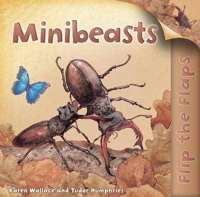 Flip the Flaps: Minibeasts (Paperback)