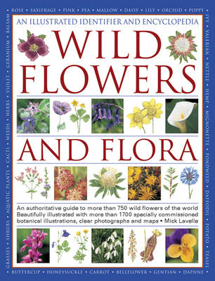 An Illustrated Identifier and Encyclopedia: Wild Flowers and Flora (Hardback)