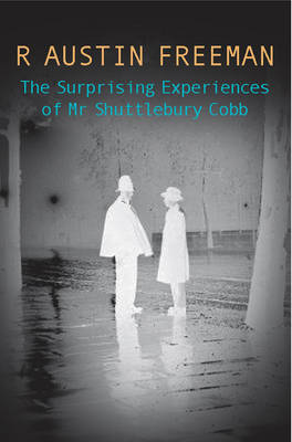 The Surprising Experiences of Mr Shuttlebury Cobb (Paperback)