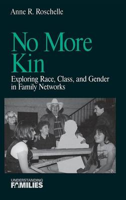 No More Kin: Exploring Race, Class and Gender in Family Networks - Understanding Families Series v. 8 (Hardback)