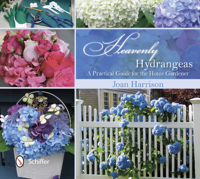 Heavenly Hydrangeas: A Practical Guide for the Home Gardener (Hardback)