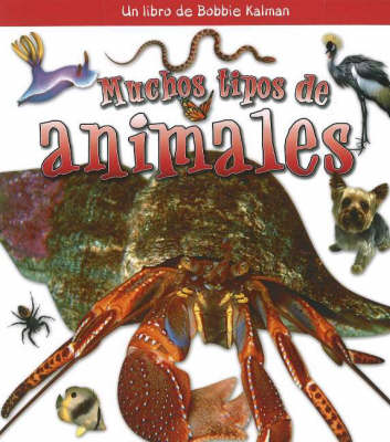 Muchos Tipos de Animales (Many Kinds of Animals) (Hardback)