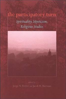 The Participatory Turn: Spirituality, Mysticism, Religious Studies (Hardback)