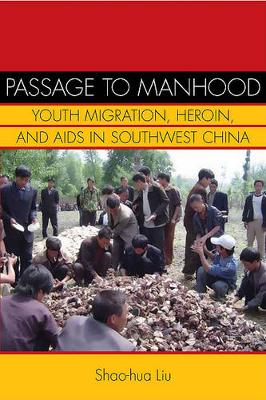 Passage to Manhood: Youth Migration, Heroin, and AIDS in Southwest China - Studies of the Weatherhead East Asian Institute (Hardback)