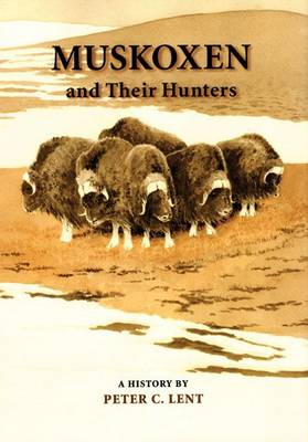 Muskoxen and Their Hunters: A History (Hardback)