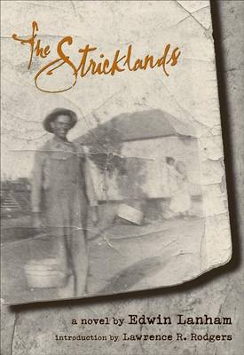 The Sticklands: A Novel (Paperback)