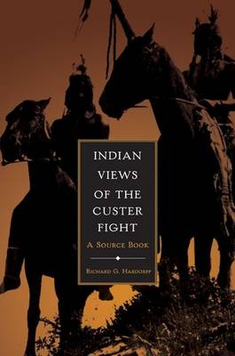 Indian Views of the Custer Fight (Paperback)