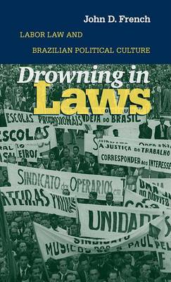 Drowning in Laws: Labor Law and Brazilian Political Culture (Hardback)