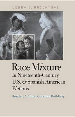 Race Mixture in Nineteenth-century U.S. and Spanish American Fictions: Gender, Culture, and Nation Building (Hardback)