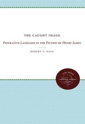 The Caught Image: Figurative Language in the Fiction of Henry James (Paperback)