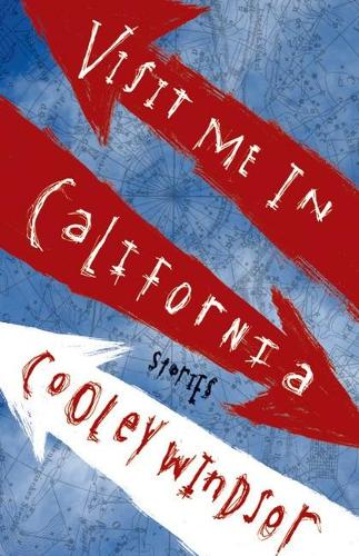 Visit Me in California: Stories - Triquarterly Books (Paperback)