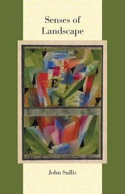 Senses of Landscape - Comparative and Continental Philosophy (Hardback)