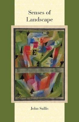 Senses of Landscape - Comparative and Continental Philosophy (Paperback)