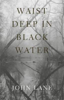 Waist Deep in Black Water (Paperback)