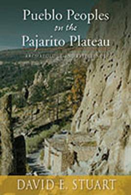 Peublo Peoples on the Pajarito Plateau: Archaeology and Efficiency (Paperback)
