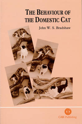 The Behaviour of the Domestic Cat (Paperback)