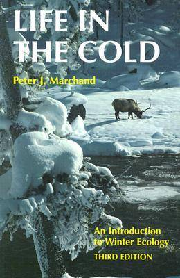 Life in the Cold: Introduction to Winter Ecology (Paperback)