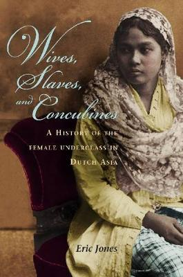 Wives, Slaves, and Concubines: A History of the Female Underclass in Dutch Asia (Hardback)