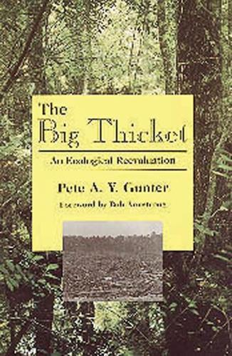 Big Thicket: An Ecological Reevaluation (Mixed media product)