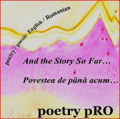 And the Story So Far...: Povestea De Pana Acum... (CD-Audio)