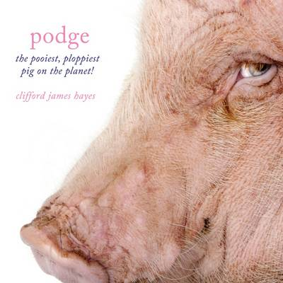 Podge - the Pooiest, Ploppiest Pig on the Planet! (Paperback)