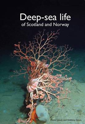 Deep-Sea Life of Scotland and Norway (Hardback)