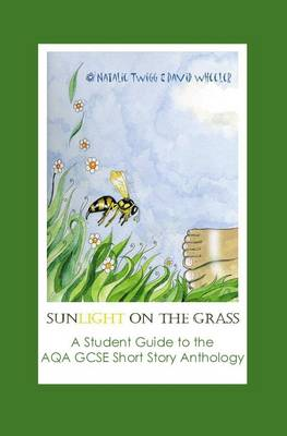 Sunlight on Grass: a Student Guide to the AQA GCSE Short Story Anthology (Paperback)