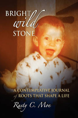 Bright Wild Stone: A Contemplative Journal of Roots That Shape a Life (Paperback)