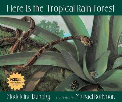 Here Is the Tropical Rain Forest (Paperback)