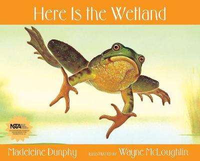Here is the Wetland - Web of Life (Paperback)