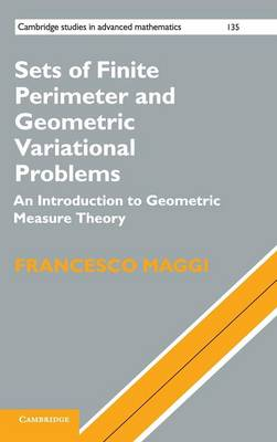 Sets of Finite Perimeter and Geometric Variational Problems: An Introduction to Geometric Measure Theory - Cambridge Studies in Advanced Mathematics 135 (Hardback)