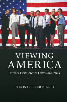 Viewing America: Twenty-First Century Television Drama (Paperback)