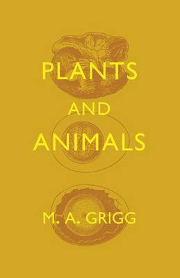 Plants and Animals (Paperback)
