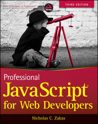 Professional JavaScript for Web Developers (Paperback)