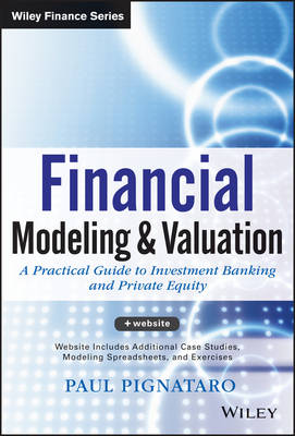 Financial Modeling and Valuation: A Practical Guide to Investment Banking and Private Equity - Wiley Finance (Hardback)