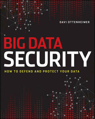 The Realities of Securing Big Data (Paperback)