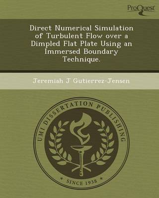 Direct Numerical Simulation of Turbulent Flow Over a Dimpled Flat Plate Using an Immersed Boundary Technique (Paperback)