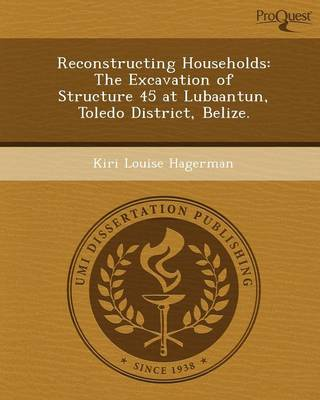 Reconstructing Households: The Excavation of Structure 45 at Lubaantun (Paperback)
