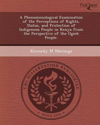 A Phenomenological Examination of the Perceptions of Rights (Paperback)