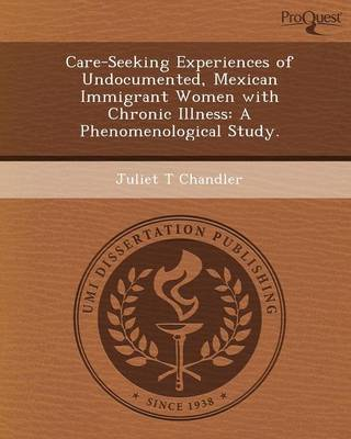 Care-Seeking Experiences of Undocumented (Paperback)