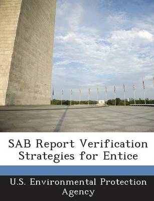 Sab Report Verification Strategies for Entice (Paperback)